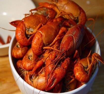 Duo de homard et langouste