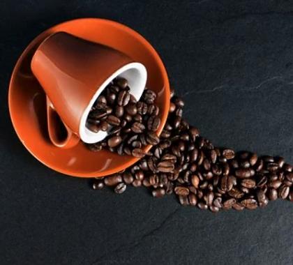 Comment est fabriqué le café ?